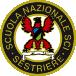 Scuola Nazionale Sci Sestriere Logo